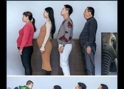 Enlace a Esta familia china pasó 6 meses haciendo ejercicio y ahora parecen modelos