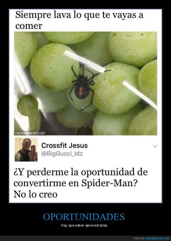 araña,comida,lavar,oportunidad,spiderman