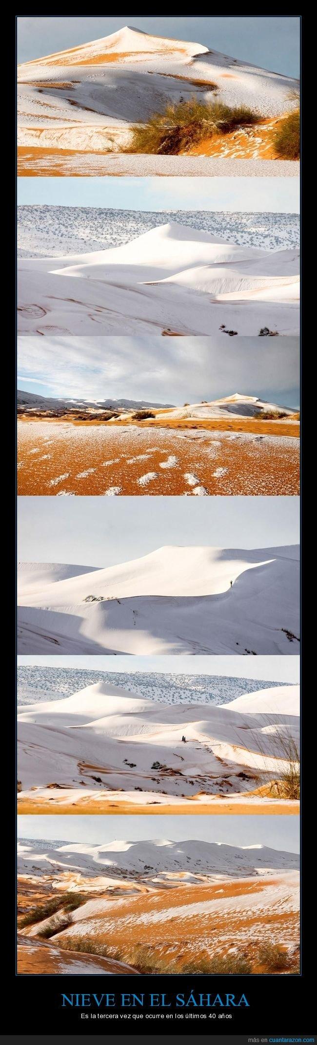 desierto,nieve,sáhara