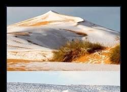 Enlace a Imágenes del Sahara cubierto de nieve