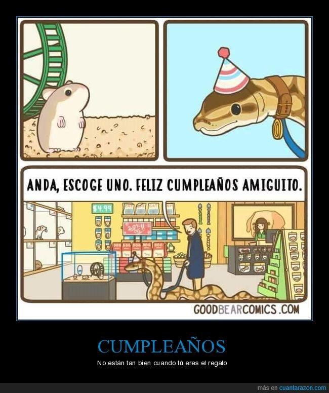 cumpleaños,escoger,ratón,serpiente