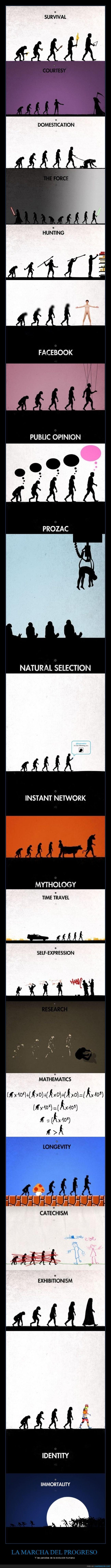 evolución,ilustraciones