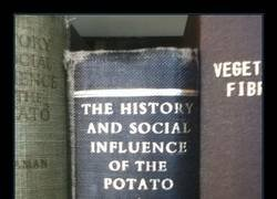Enlace a Lectura recomendada