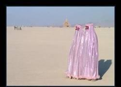 Enlace a Burkas para ir fabulosa