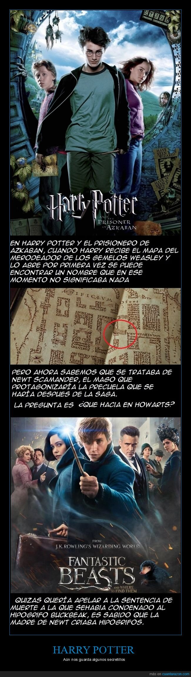 animales fantásticos y dónde encontrarlos,harry potter
