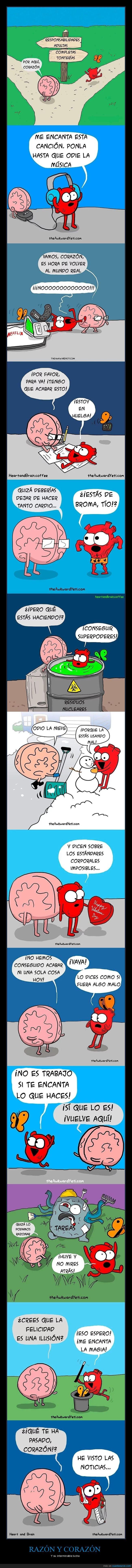 cerebro,corazón,razón
