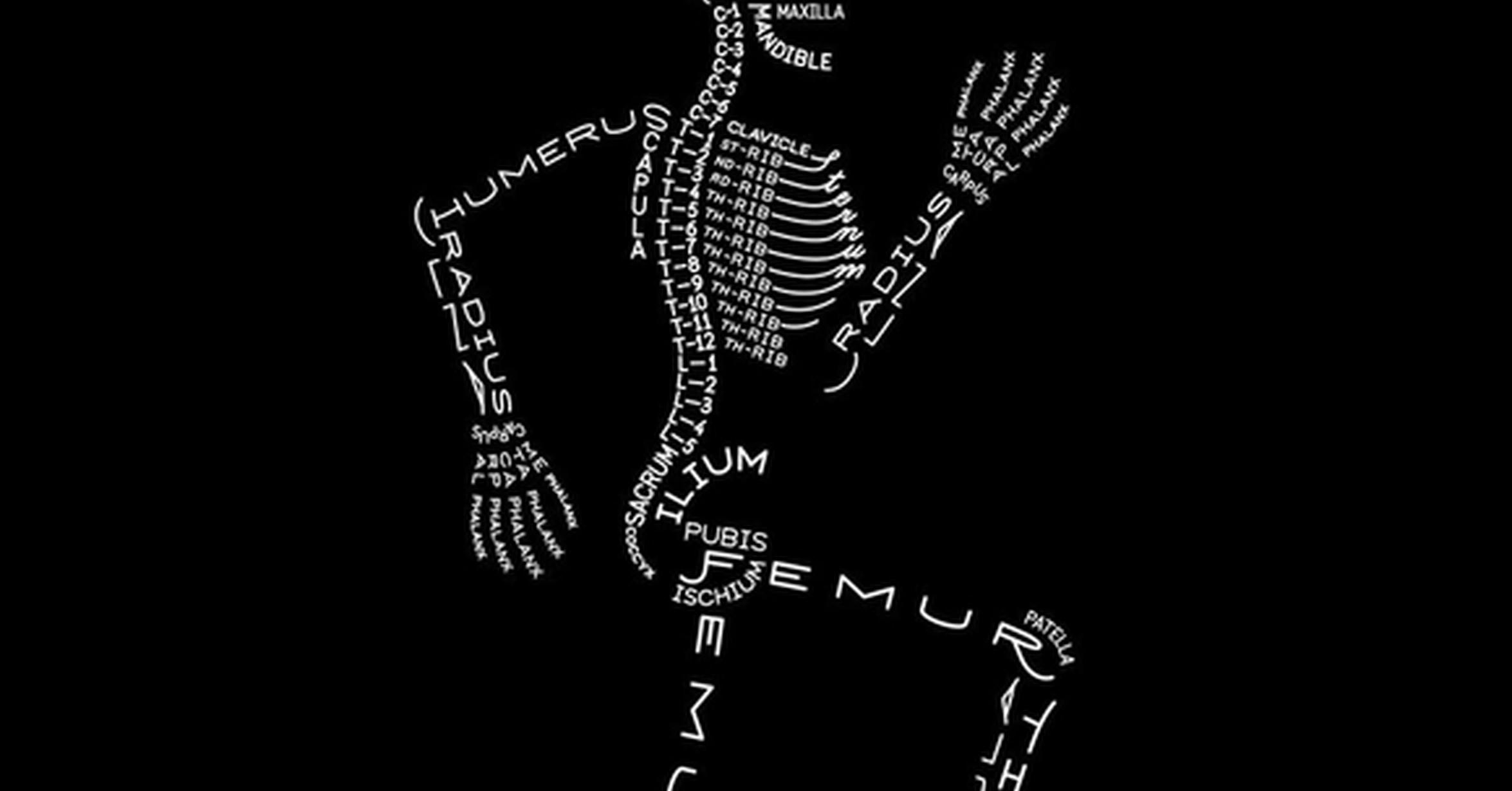 Cuánta razón! / Los nombres de los huesos del cuerpo humano