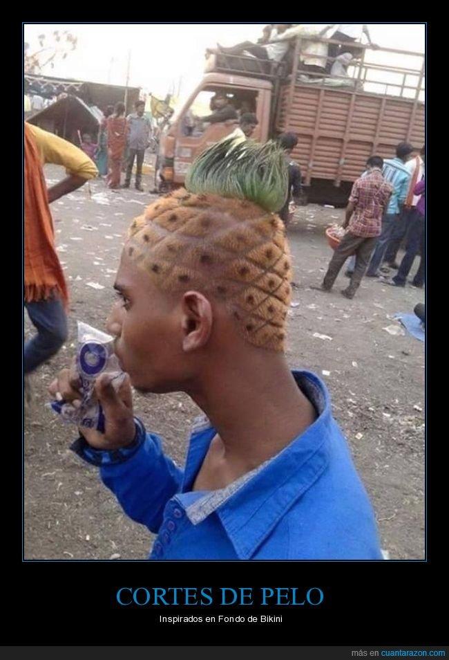 bob esponja,corte de pelo,piña