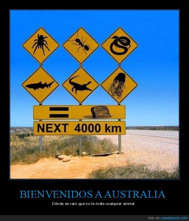 australia,bienvenidos,te van a matar,vamos a morir