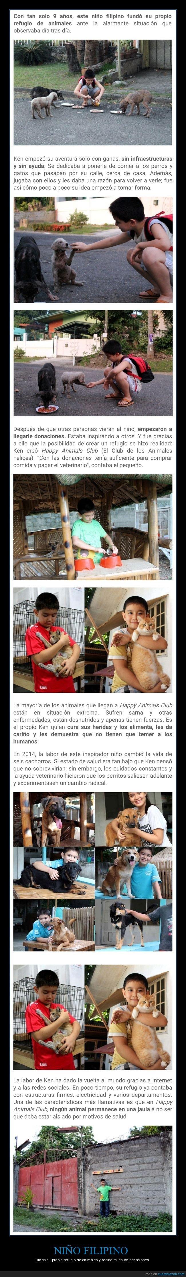 animales,donaciones,filipino,niño,refugio