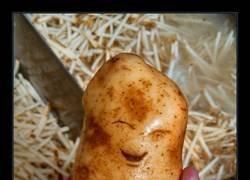 Enlace a Patata feliz