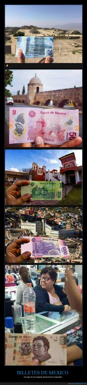 arte,billetes,lugar,México,moneda,valor