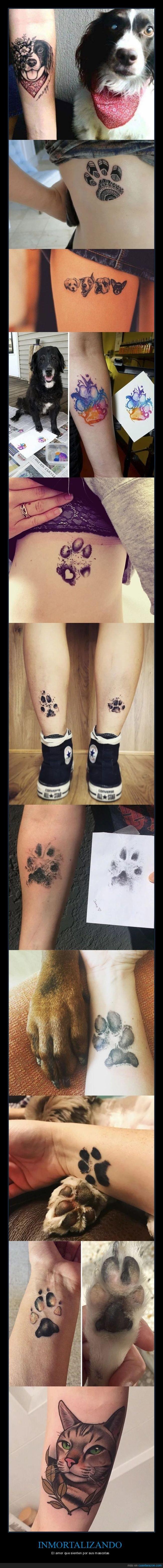 gatos,mascotas,perros,tatuajes