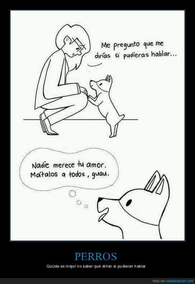hablar,matar,perro