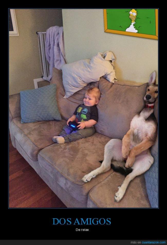 niño,perro,sofá