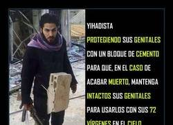 Enlace a Lógica yihadista