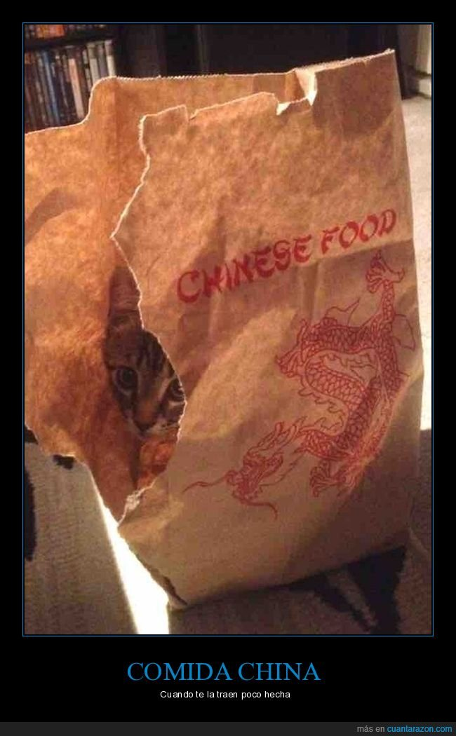 comida china,gato,poco hecha