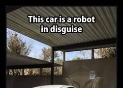 Enlace a Claramente es un robot camuflado