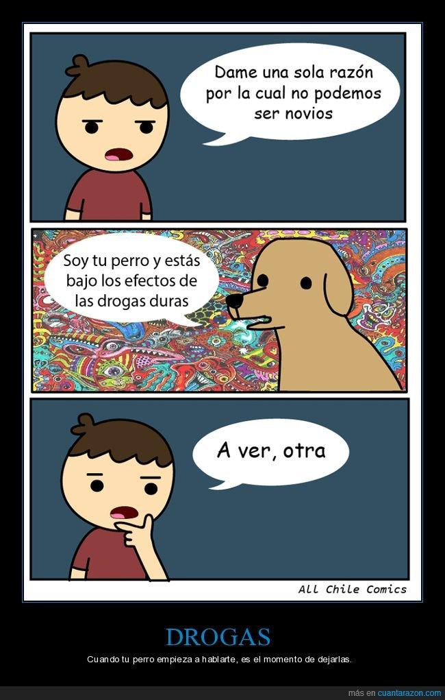 drogas,novios,perro,razón