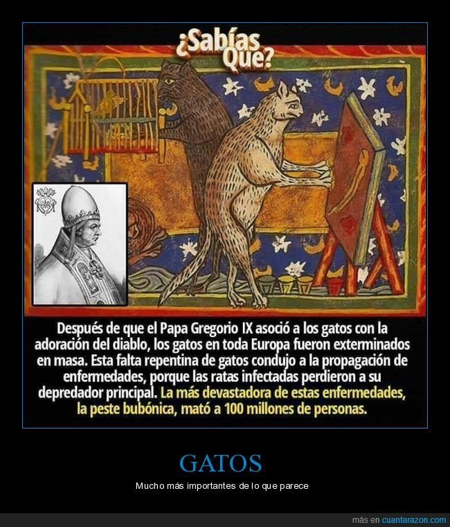 curiosidades,gatos,gregorio ix,papa,peste,ratas