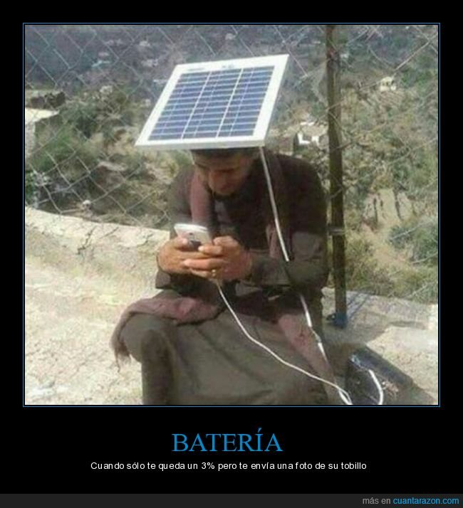 árbe,cargador,móvil,panel solar