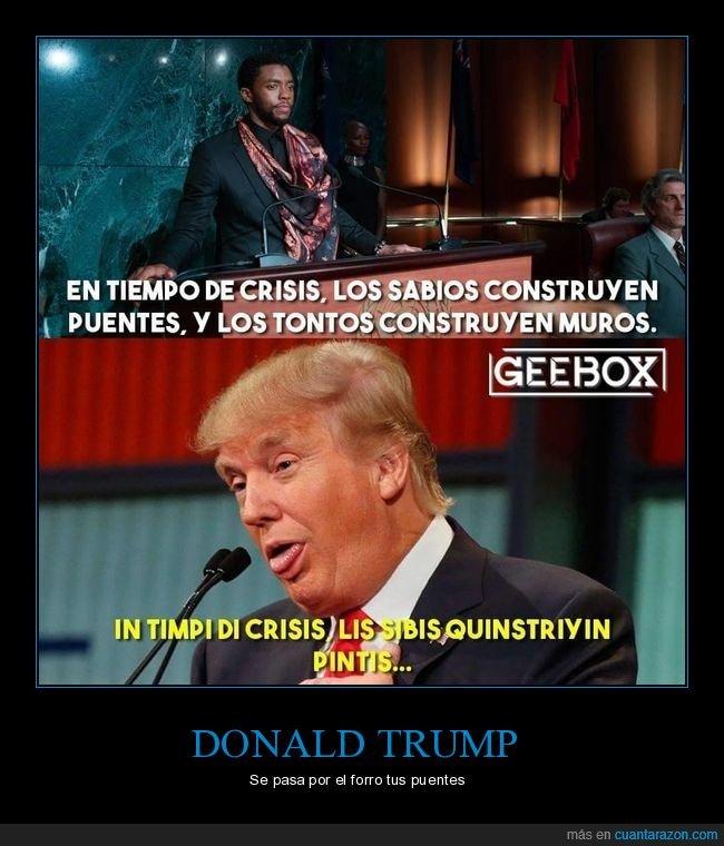 crisis,donald trump,muros,políticos,puentes,sabios,tontos