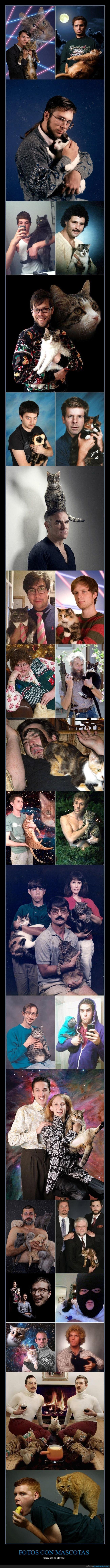 fotos,mascotas,posando