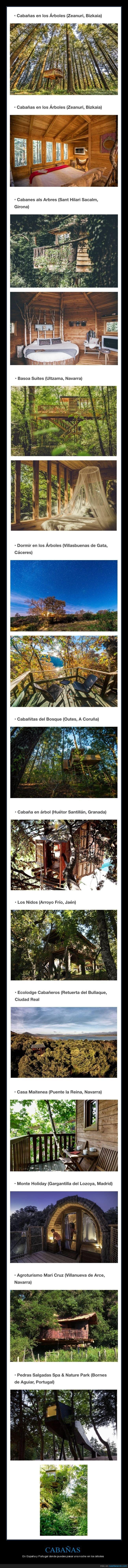 árboles,cabañas