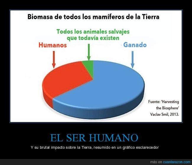 gráfico,impacto,ser humano,tierra