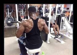 Enlace a En el gym