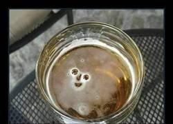 Enlace a Así no hay quién deje la cerveza