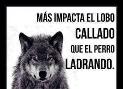 Enlace a El impacto del lobo