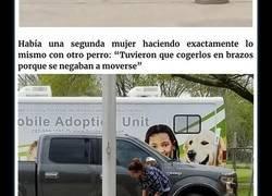 Enlace a Esta mujer grabó a un perro asustado siendo arrastrado a la perrera por su dueña, y su reacción te romperá el corazón