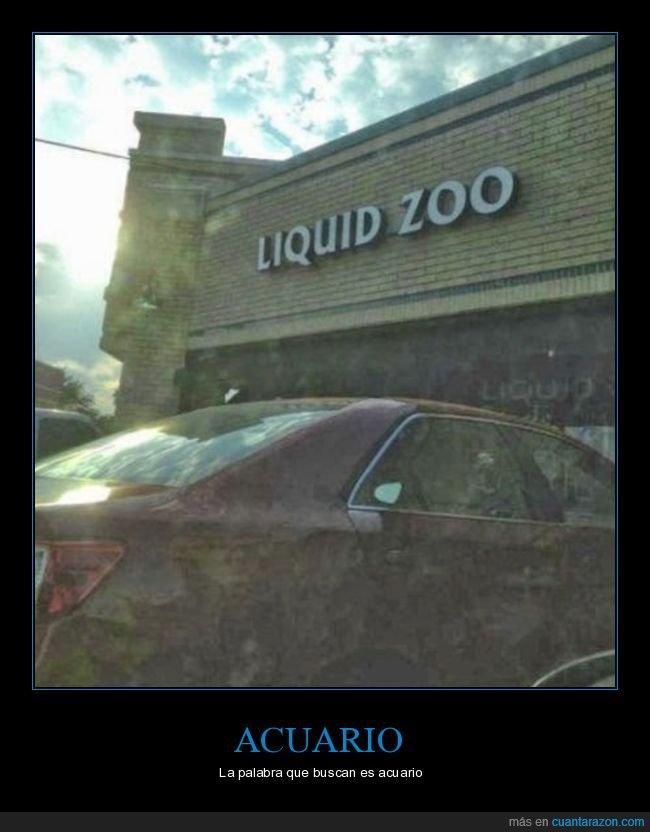 acuario,wtf,zoo líquido