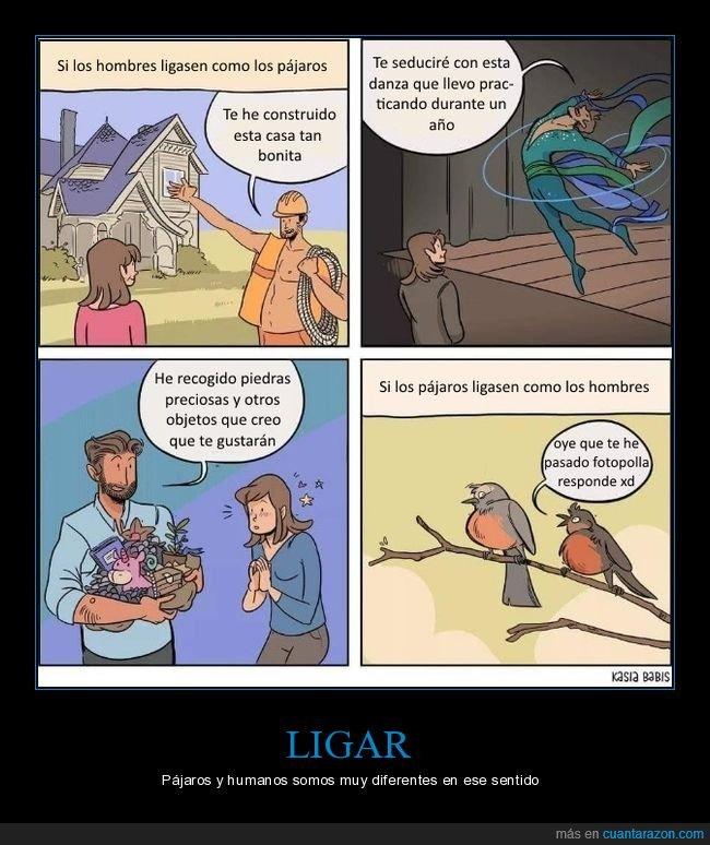 humanos,ligar,pájaros