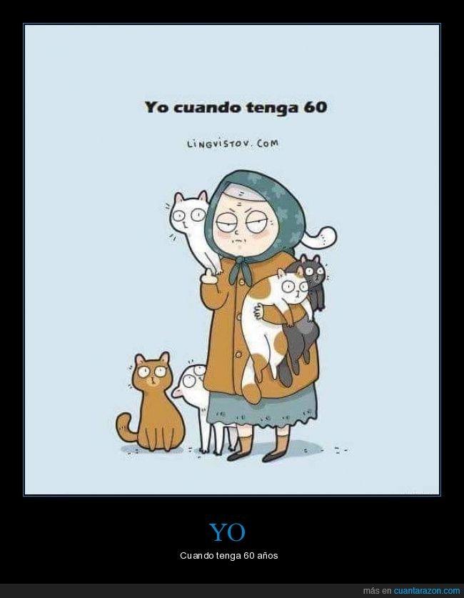 60 años,abuela,gatos