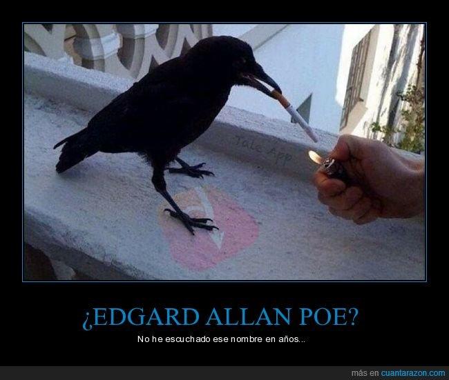 cuervo,edgard allan poe,fumar,gigarro,literatura