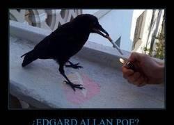 Enlace a El cuervo de Poe