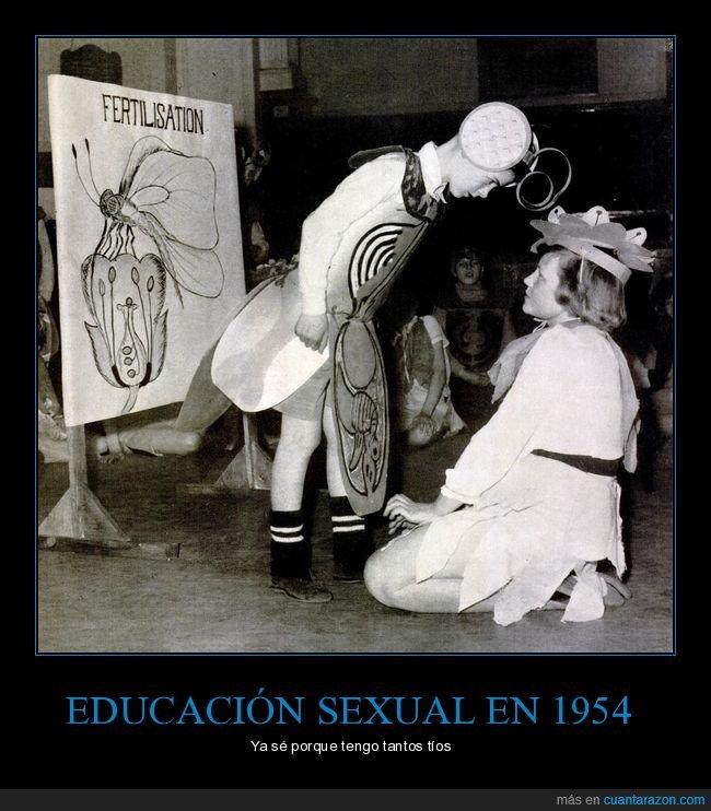 1954,curiosidades,educación sexual