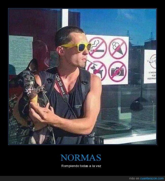 cartel,fumando,helado,perro,prohibición