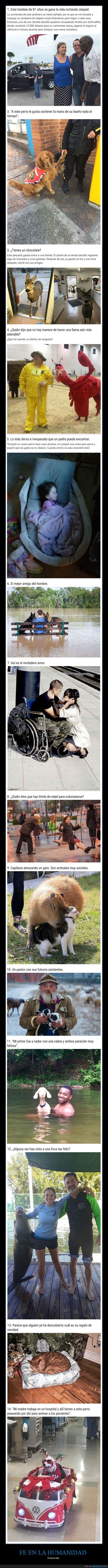 fe en la humanidad,fotos