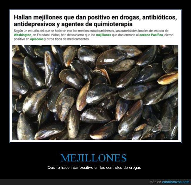 antidepresivos,drogas,mejillones,quimioterapia