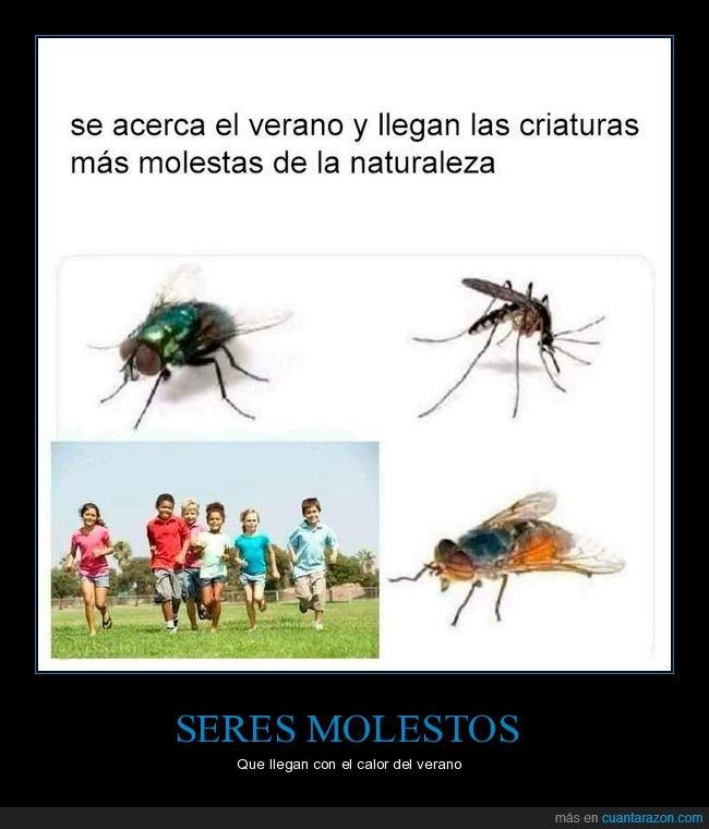 bichos,criaturas molestas,niños