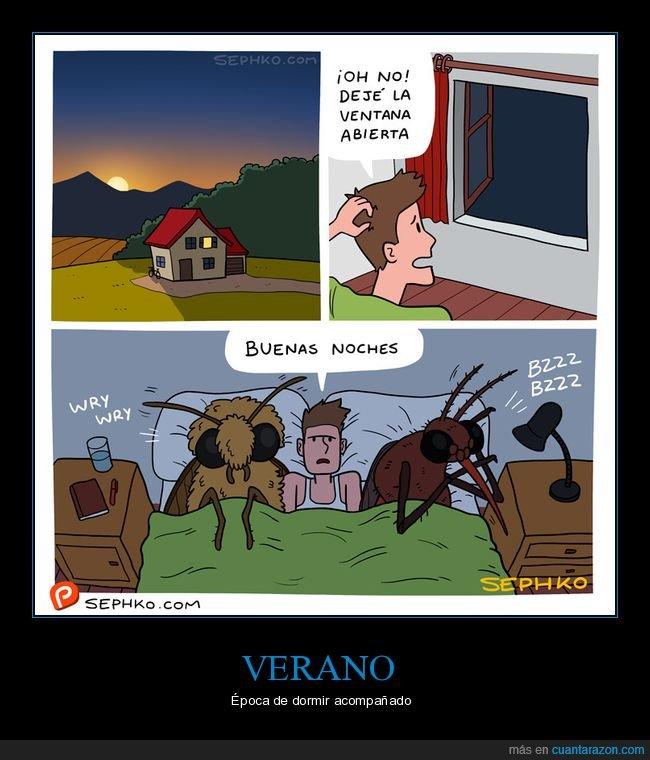 abierta,bichos,dormir,mosquitos,polillas,ventana