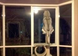 Enlace a Qué gato más raro...
