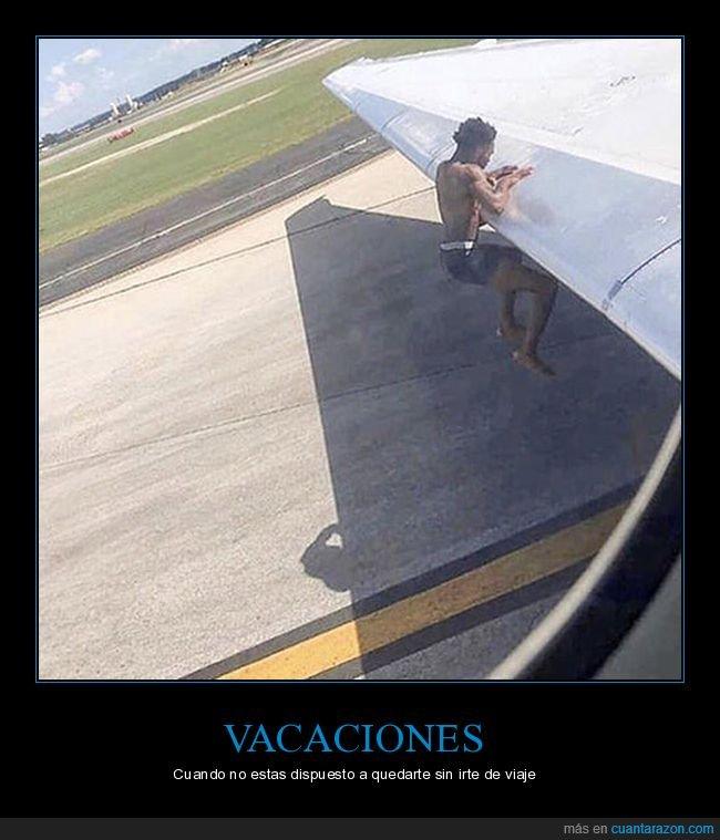 ala,avión,wtf
