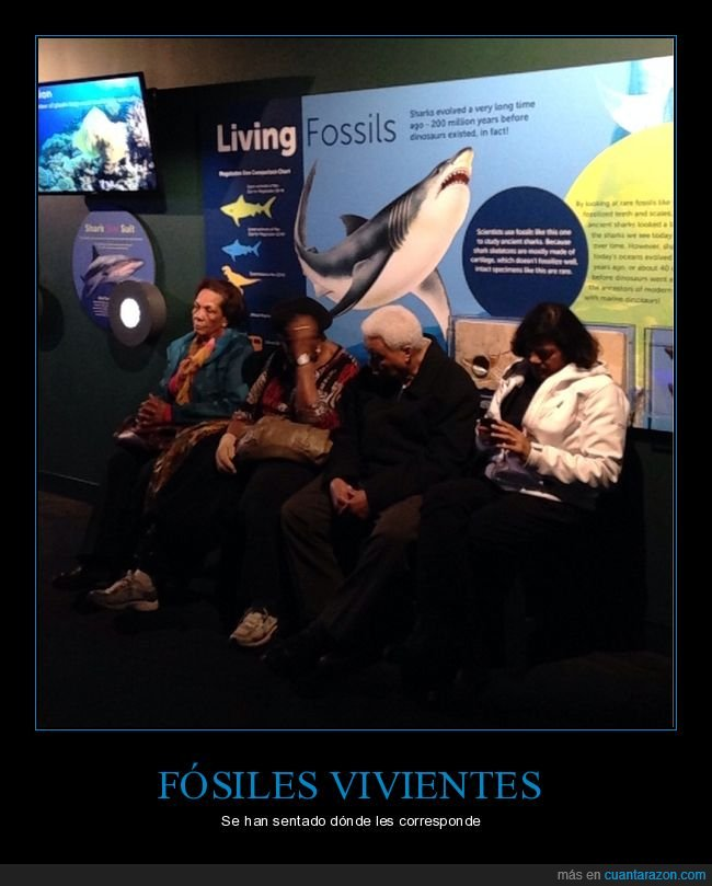 fósiles,sentados,viejos