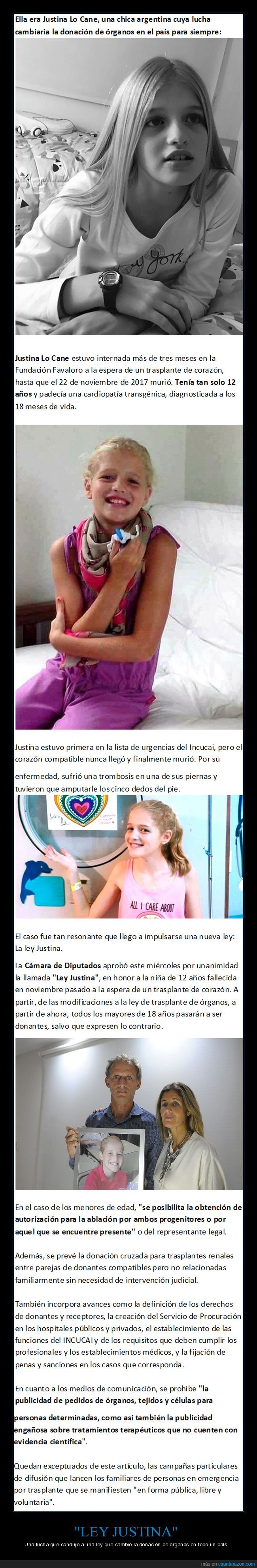 argentina,donación,justina lo cane,ley,órganos