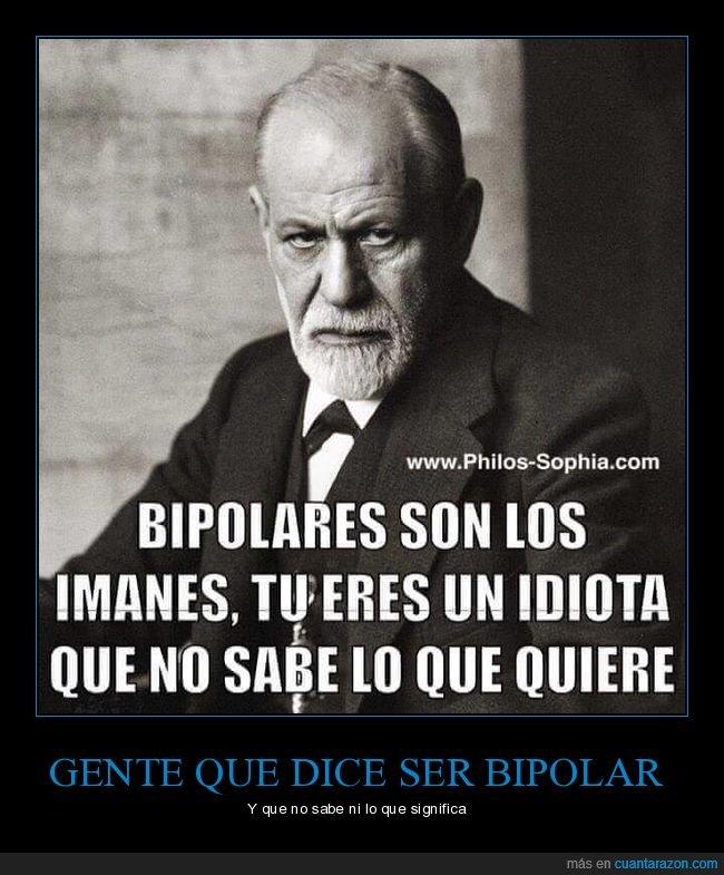bipolares,freud,imanes