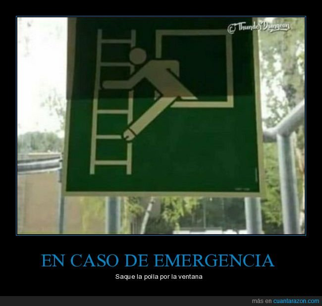 cartel,emergencia,wtf